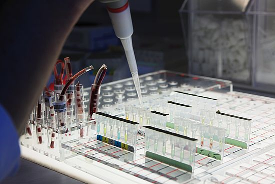 image.alternative